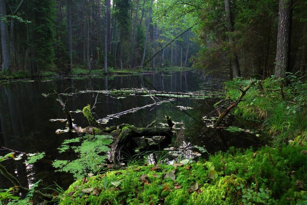 Roztocze National Park