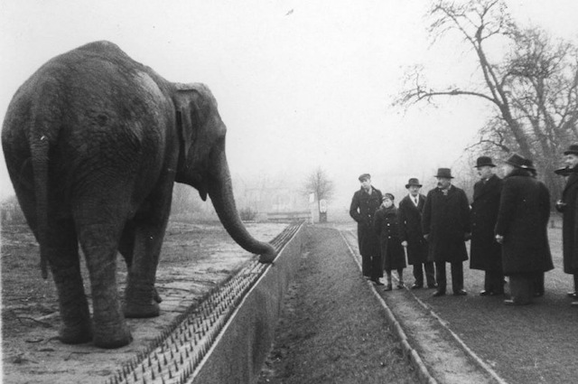 The Warsaw Zoo History